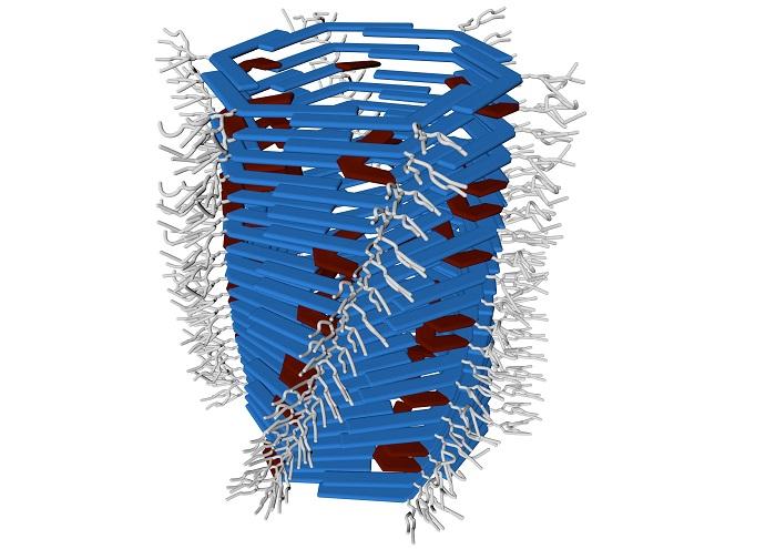Araştırmacılar Yeni Bir Tip Sentetik Moleküler Makina Geliştirdi
