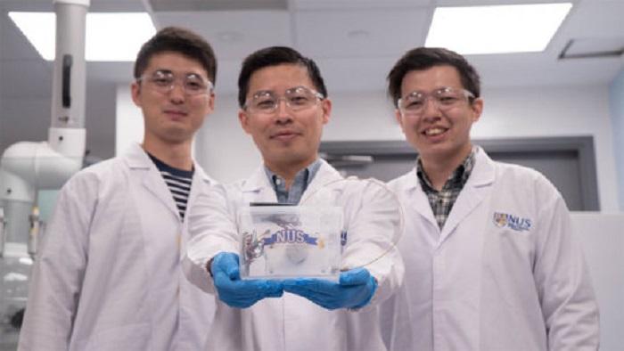 Bilim İnsanları Daha Çevreci Etilen Üretimi için Yapay Fotosentez Cihazı Geliştirdiler