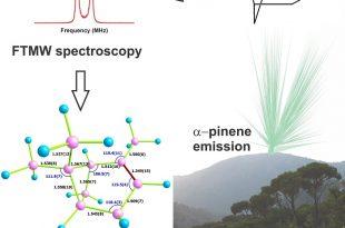 bir orman aromasinin molekul yapisi 310x205 - Bir Orman Aromasının Molekül Yapısı