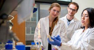 isikla aktive olan nanoparcaciklar antibiyotikleri guclendirebilir 310x165 - Işıkla Aktive Olan Nanoparçacıklar Antibiyotikleri Güçlendirebilir