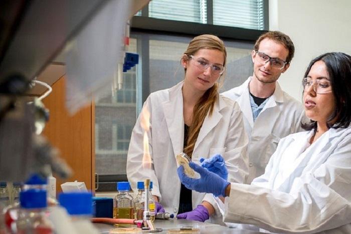 Işıkla Aktive Olan Nanoparçacıklar Antibiyotikleri Güçlendirebilir