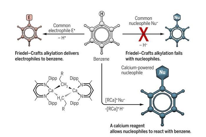 Kalsiyum, Benzen Alkilasyonunda 'Benzer Benzeri İter' Kuralını Yıkıyor