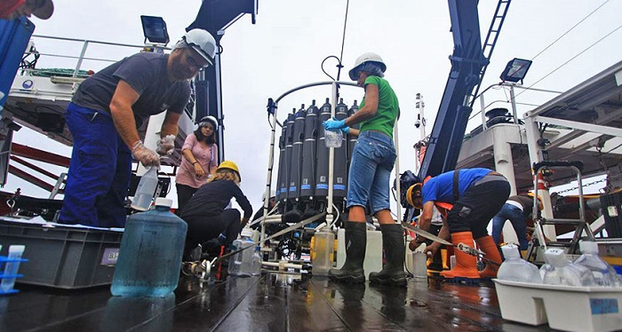 Okyanusların Derinliklerinde Bu Bakteriler Karbon Yakalamada Anahtar Rol Oynuyor