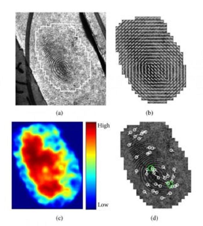 otomatik parmak izi analizi gerceklige bir adim daha yaklasmaktir - Otomatik Parmak İzi Analizi Gerçekliğe Bir Adım Daha Yaklaşmaktır