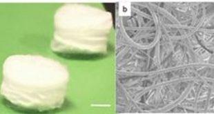 piezoelektrik yapi iskelesi hucreleri harekete geciriyor 310x165 - Piezoelektrik Yapı İskelesi, Hücreleri Harekete Geçiriyor