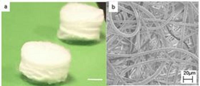 piezoelektrik yapi iskelesi hucreleri harekete geciriyor - Piezoelektrik Yapı İskelesi, Hücreleri Harekete Geçiriyor