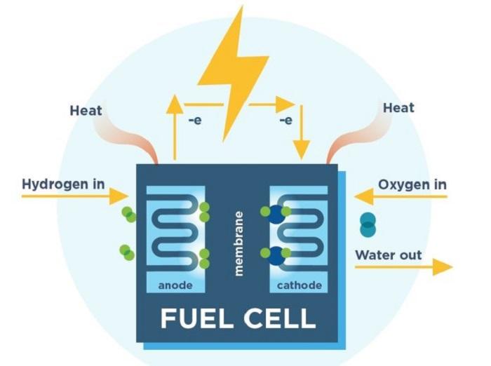 Yakıt Hücreleri için Ucuz ve Güvenli Elektrokatalizörler