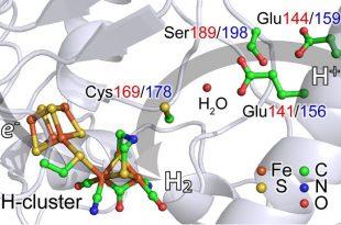 """yeni x isini spektroskopisi hidrojen ureten katalizor buluyor 310x205 - Yeni X-Işını Spektroskopisi, """"Hidrojen Üreten Katalizör"""" Buluyor"""