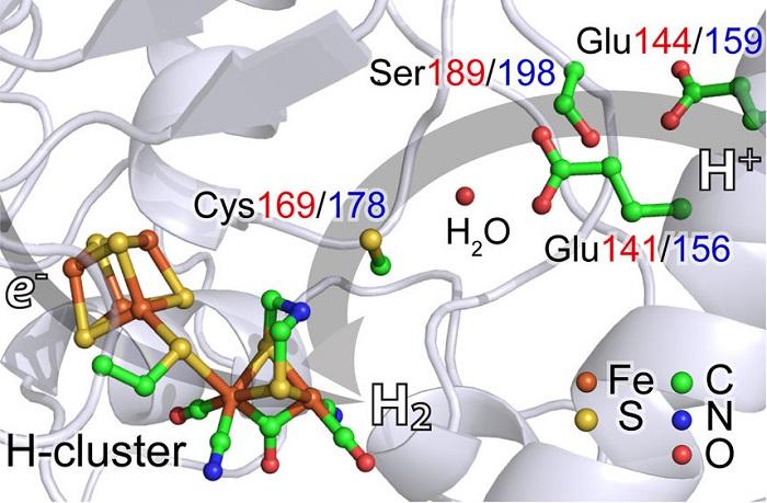 "yeni x isini spektroskopisi hidrojen ureten katalizor buluyor - Yeni X-Işını Spektroskopisi, ""Hidrojen Üreten Katalizör"" Buluyor"