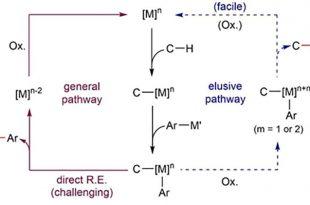 bilim adamlari normal kosullarda c h baglarinin arilasyonunu elde ediyor 310x205 - Bilim Adamları Normal Koşullarda C-H Bağlarının Arilasyonunu Elde Ediyor