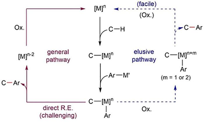 bilim adamlari normal kosullarda c h baglarinin arilasyonunu elde ediyor - Bilim Adamları Normal Koşullarda C-H Bağlarının Arilasyonunu Elde Ediyor