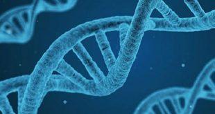 bilim insanlari dunyanin baslangicini kimyayla acikladi 310x165 - Bilim İnsanları Dünyanın Başlangıcını Kimyayla Açıkladı