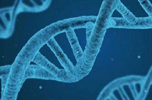 bilim insanlari dunyanin baslangicini kimyayla acikladi 310x205 - Bilim İnsanları Dünyanın Başlangıcını Kimyayla Açıkladı