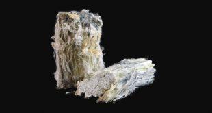 brezilyanin asbest yasagi abdnin ithalatini olumsuz etkiliyor 310x165 - Brezilya'nın Asbest Yasağı ABD'nin İthalatını Olumsuz Etkiliyor