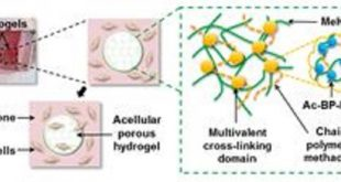 kemik onariminda nanokompozitler 310x165 - Kemik Onarımında Nanokompozitler