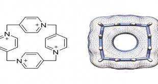molekuler kutu 4 piridin kimyacilari sasirtti 310x165 - Moleküler Kutu (4-Piridin) Kimyacıları Şaşırttı