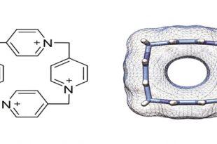 molekuler kutu 4 piridin kimyacilari sasirtti 310x205 - Moleküler Kutu (4-Piridin) Kimyacıları Şaşırttı