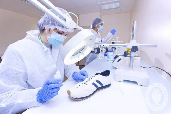 Polen Genetiği Adli Araştırmalara Yardımcı Olabilir