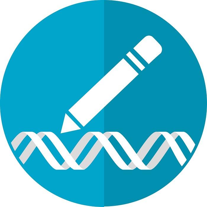 arastirmacilar crispr genom aktivasyonunu kullanarak ilk kok hucreleri yaratiyor - Araştırmacılar, CRISPR Genom Aktivasyonunu Kullanarak İlk Kök Hücreleri Yaratıyor