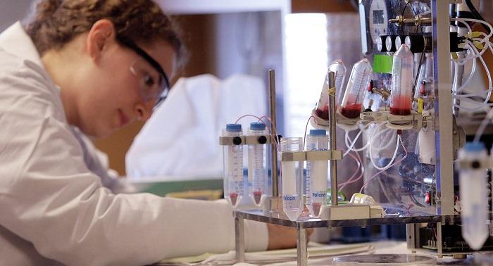 Bilim İnsanları Kanseri Öldüren Bir Süper Suikastçı Keşfetti