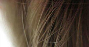 bugday gluteninin kirilgan yapidaki sacin baglarini onardigi kesfedildi 310x165 - Buğday Glüteninin, Kırılgan Yapıdaki Saçın Bağlarını Onardığı Keşfedildi