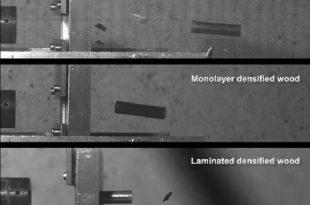 celik kadar guclu kursun gecirmez super yogunluklu tahta 310x205 - Çelik Kadar Güçlü Kurşun Geçirmez Süper Yoğunluklu Tahta