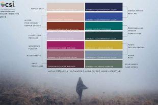 csi international 2018 icin renk analizlerini acikladi 310x205 - CSI Internatıonal 2018 için Renk Analizlerini Açıkladı