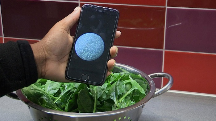 Düşük Maliyetle, Gıda ve Sudaki Bakterileri Tespit Edebilen Yeni Buluş