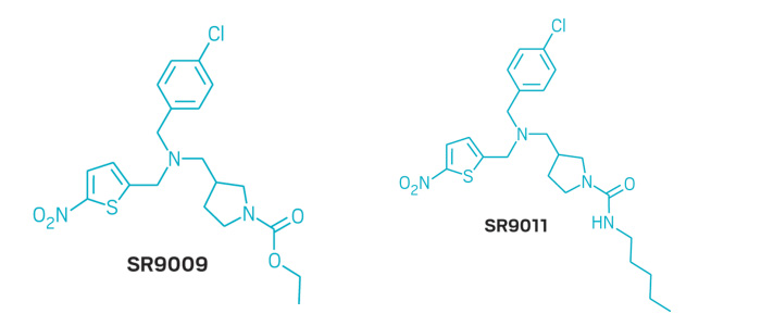Günlük Biyolojik Saati Aktifleştirmek Kanser Hücrelerini Öldürüyor