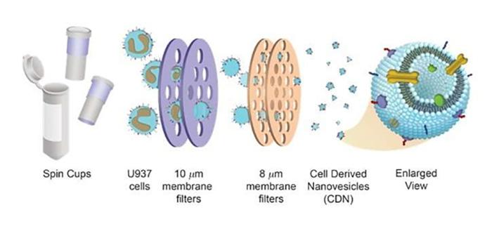 Hücre Kökenli İlaç Dağıtım Sistemleri