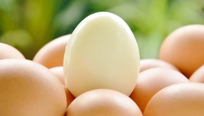 Japon Bilim İnsanları Temiz Enerji için Yumurta Beyazı Kullanıyor