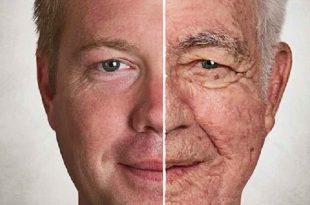 kanser kurtulanlar daha hizli yaslaniyor 310x205 - Kanser: Kurtulanlar Daha Hızlı Yaşlanıyor