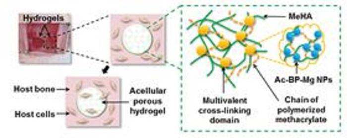 kemik onarimi icin nanokompozit dogru nokta mi - Kemik Onarımı için Nanokompozit Doğru Nokta mı?