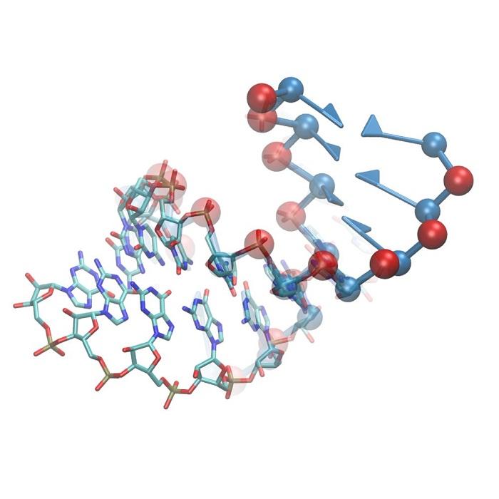 RNA'nın Keşfedilen Yapısı