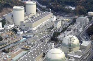 rus bilim insanlarindan nukleer reaktorlerin guvenligini arttiracak adim 310x205 - Rus Bilim İnsanlarından Nükleer Reaktörlerin Güvenliğini Arttıracak Adım