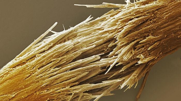 sacinizin kirilmis uclarini tedavi etmek mi istiyorsunuz bugday gluteni ile yikamayi deneyin - Saçınızın Kırılmış Uçlarını Tedavi Etmek mi İstiyorsunuz? Buğday Glüteni ile Yıkamayı Deneyin