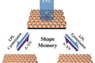 sekil hafizali gozenekli polimer filmler 310x205 - Şekil Hafızalı Gözenekli Polimer Filmler