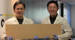 super tahta celigin gucunu sergiliyor 310x165 - Süper Tahta, Çeliğin Gücünü Sergiliyor