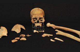 antik dna ilk iskandinavlarin gizemli kokenlerine isik tutuyor 310x205 - Antik DNA, İlk İskandinavların Gizemli Kökenlerine Işık Tutuyor
