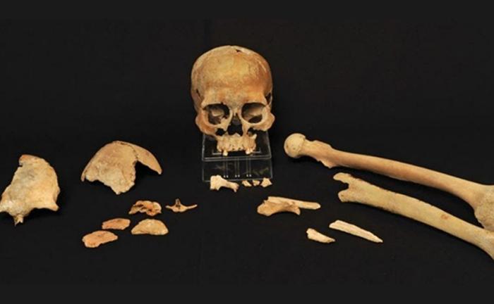 antik dna ilk iskandinavlarin gizemli kokenlerine isik tutuyor - Antik DNA, İlk İskandinavların Gizemli Kökenlerine Işık Tutuyor