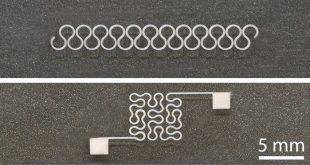 arastirmacilar esnek gumus nanotel devreler bastilar 310x165 - Araştırmacılar Esnek Gümüş Nanotel Devreler Bastılar