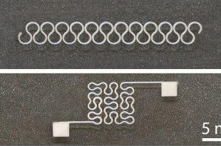 arastirmacilar esnek gumus nanotel devreler bastilar 310x205 - Araştırmacılar Esnek Gümüş Nanotel Devreler Bastılar