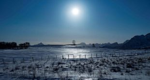 buzullar tarihin en ilik kisini geciriyor 310x165 - Buzullar Tarihin En Ilık Kışını Geçiriyor