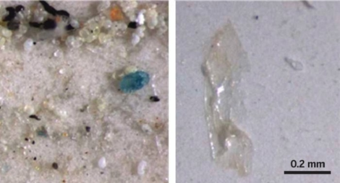 Çin'de Masa Tuzunda Plastikten Minik Parçalar Bulundu