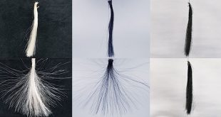 grafen sac boyasi istenmeyen elektriklenmeleri onluyor 310x165 - Grafen Saç Boyası, İstenmeyen Elektriklenmeleri Önlüyor