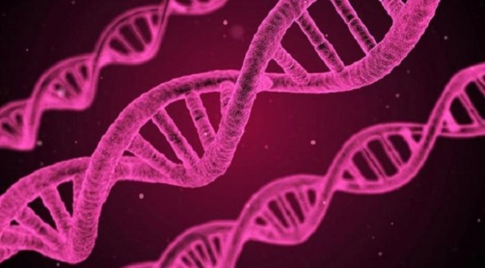 Güney Koreli Bilim İnsanlarından LED'le Kanser Tedavisi