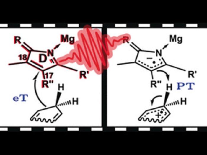 Hidrojen Transferi: Ardından Gelen Şeylerden Biri