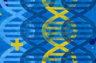 kanser ilaclari salinimi icin dnayi proglamlamak 310x205 - Kanser İlaçları Salınımı için DNA'yı Proglamlamak