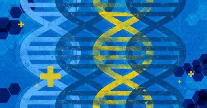 Kanser İlaçları Salınımı için DNA'yı Proglamlamak