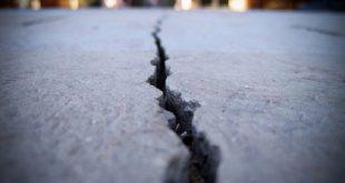 mantarlar betonun kendi catlaklarini onarmasina yardim edebilir 310x165 - Mantarlar Betonun Kendi Çatlaklarını Onarmasına Yardım Edebilir